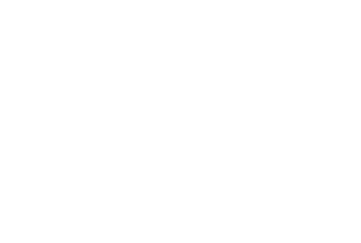 Little Morrell Kennels | Family-run Dog Kennels in the Warwickshire area